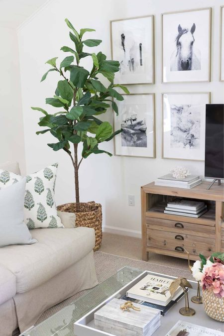 This faux fiddle leaf fig tree in our living room makes this corner come alive! The basket it sits in, pillows, and other accessories are linked. (home decor ideas)  #LTKunder100 #LTKhome #LTKunder50
