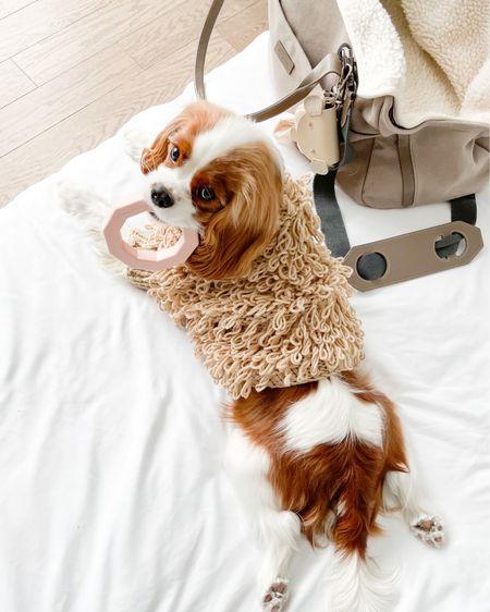 Maxbone's biggest sale of the season happening now! 20% off everything with code SUNSHINE ☀️😎     dog clothes, dog accessories, dog toys     http://liketk.it/3iJqt #liketkit @liketoknow.it #LTKdog #LTKfamily #LTKhome #LTKsalealert
