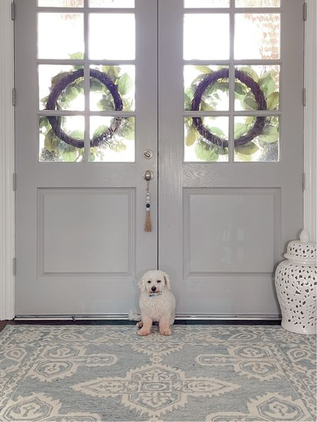 My little guard dog! Recently painted the doors Coventry Gray by Benjamin Moore from the previous dark brown. I love how it lightened and brightened the entryway. The beautiful safavieh rug makes a statement with it's beautiful pale blue color. A set of ginger jars sit in the corner of the entryway add character and the cute beaded door knob hanger adds an unexpected chic piece of inspiration that will give your space just a touch more flair.    #LTKhome #LTKstyletip #LTKunder50
