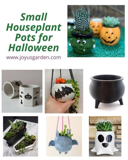 Small houseplants and small succulents look so cute in these small Halloween pots for houseplants. Decorate your home with a pumpkin planter, skull pot, cauldron pot, hanging bat planter, or coffin planter for that cute Halloween decor look. Halloween 2021, halloween decor, indoor Halloween decor, houseplant pots, houseplant planters, small houseplant pots   #LTKhome #LTKunder50 #LTKSeasonal