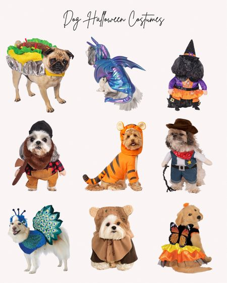 Halloween, dog costumes, pet costumes   Follow me for more ideas and sales.  Double tap this post to save it for later    #LTKfamily #LTKHoliday #LTKSeasonal