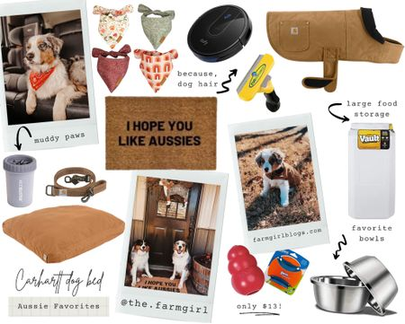 My favorite things for our Aussies. 🐶   #LTKhome #LTKfamily