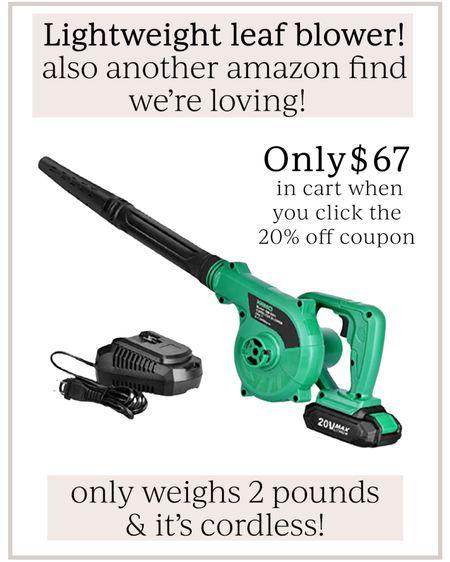 Lightweight cordless leaf blower // Amazon find // outdoor gadgets #LTKhome #LTKunder100 #liketkit @liketoknow.it http://liketk.it/3hMtJ