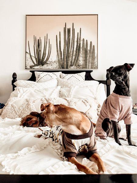Neutral Bedroom Decor. Cactus Canvas Gold Framed Print. Lace Comforter. Monkey Print Pet Pajamas. Love You To The Moon Pet Pajamas. Pottery Barn Inspired Home #amazon #amazonfinds #wayfair #potterybarn #dogmom #ltkpet  #LTKSeasonal #LTKfamily #LTKhome