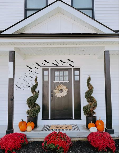 Front porch got a fall makeover 🎃 earlier this week we planted these beautiful mums 😍 I love how they add just the perfect amount of color to the front of the house.   #LTKHoliday #LTKSeasonal #LTKGiftGuide
