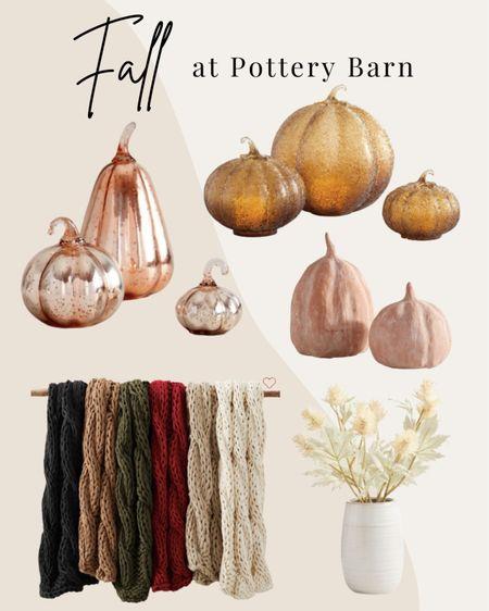 NEW Fall decor from Pottery Barn 🍂  #LTKSeasonal #LTKhome #LTKHoliday
