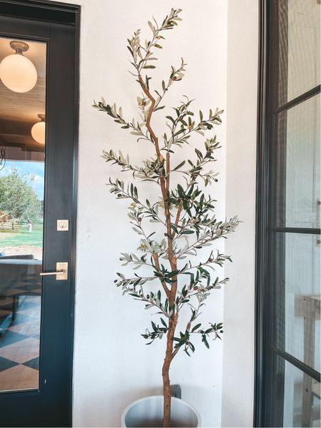 Nearly natural rosemary tree   #LTKhome