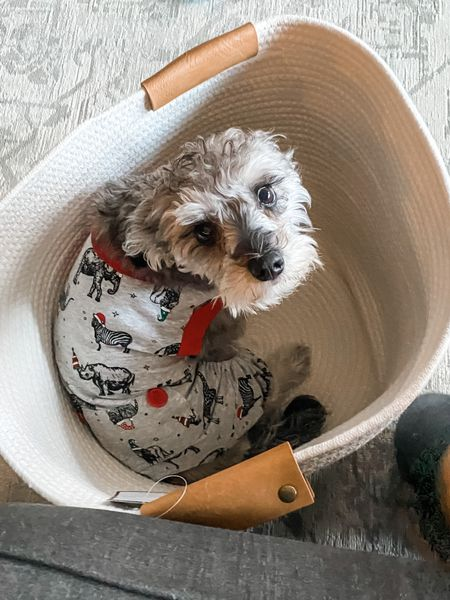 Pet pajamas from Target and storage tote that won't really be for the pups! She's in size small.   #LTKunder50 #LTKhome #LTKkids