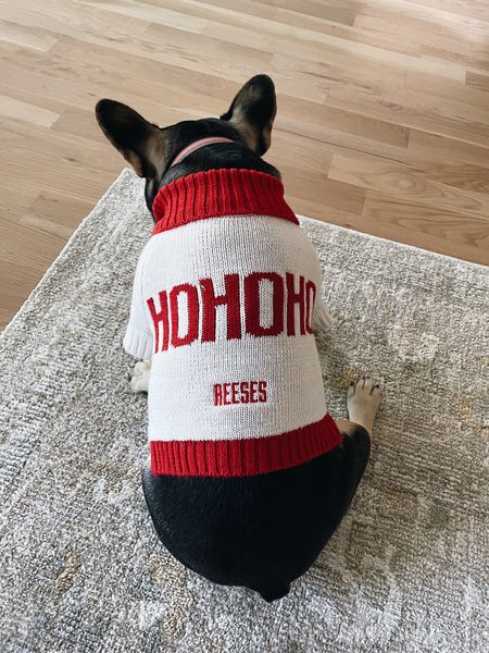 Got Reeses a new sweater for the upcoming Christmas season! She's wearing the medium 🎅🏻🤶🏻🐶   #LTKHoliday #LTKunder100