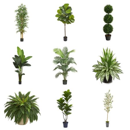 Check out these faux plants from @nearlynaturalfloral 🌿 Such a great option for any home and I love them because I can't kill them lol 😜 Let's just say I don't have a green thumb!  . .   Shop my daily looks by following me on the LIKEtoKNOW.it shopping app  http://liketk.it/392QT #liketkit @liketoknow.it #LTKhome #LTKfamily