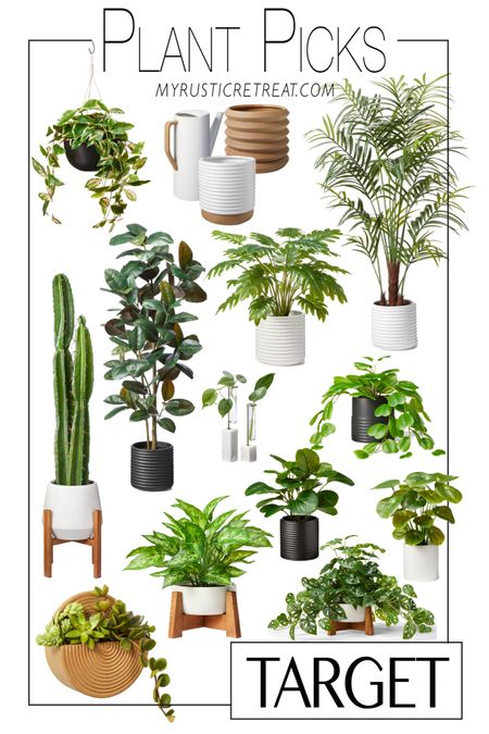 Just shared THE most amazing faux plants ever on the blog!!!! They look SO REAL y'all!!!! http://liketk.it/3fhED #liketkit @liketoknow.it #LTKhome @liketoknow.it.home Shop your screenshot of this pic with the LIKEtoKNOW.it shopping app