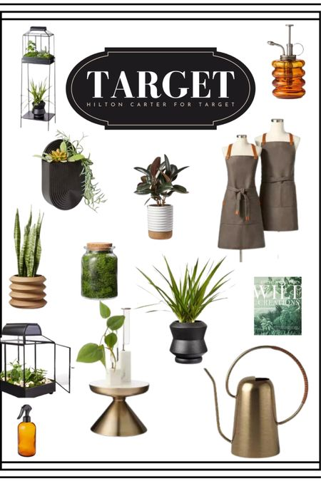 Hilton Carter for Target 🎯 🪴 houseplants and indoor gardening gear 🥰 #target #hiltoncarter   #LTKSeasonal #LTKhome