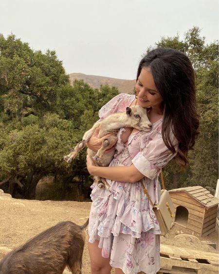 So cute, you have goat to be kidding me. 🥺 @revolve @tularosalabel @liketoknow.it http://liketk.it/2WzVK #liketkit   #revolve #revolveme #revolve #revolvearoundthehouse #tularosalabel #tularosa