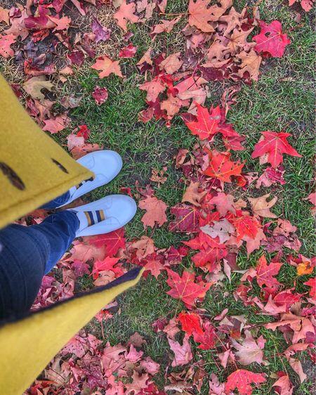 Beautiful #fall day in #Chicago 🍂🍂   http://liketk.it/2G1KV #liketkit @liketoknow.it #LTKstyletip #LTKunder100 #LTKsalealert #sweaterweather #fallstyle #bodenbyme #boden #chicagogram #fallday #igerschicago  #sundayfunday #fallleaves #itsfallyall