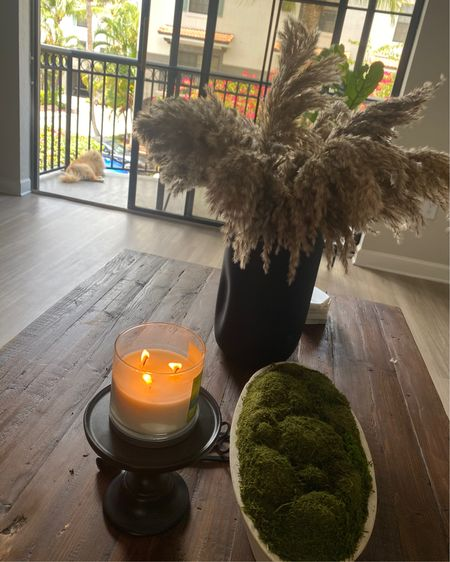 Home accessories/ patio furniture/ pampas grass/ black vase/ table decorations http://liketk.it/3fktG #liketkit @liketoknow.it #LTKsalealert #LTKhome #LTKunder50 Shop my daily looks by following me on the LIKEtoKNOW.it shopping app