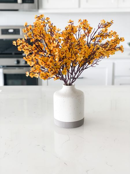 A touch of fall here and there throughout your home can make it really feel like the season. I love these faux flowers to give that pop of fall color in my kitchen.     #LTKhome #LTKunder50 #LTKSeasonal