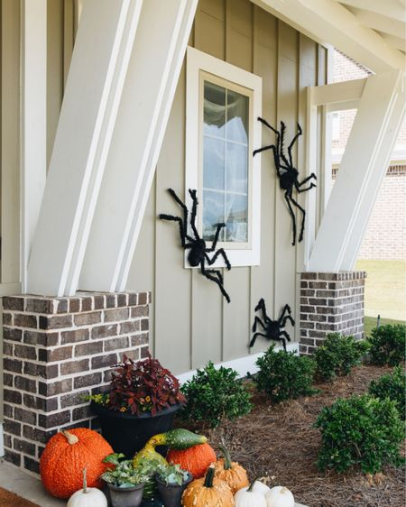 Easy and affordable Halloween decorations for the outside of your home! I nailed these spiders to the side of my house for a fun and spooky decor  🕷   #LTKSeasonal #LTKHoliday #LTKhome
